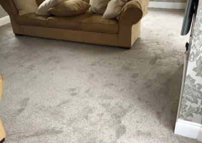 carpet-28