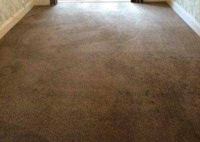 carpet-29